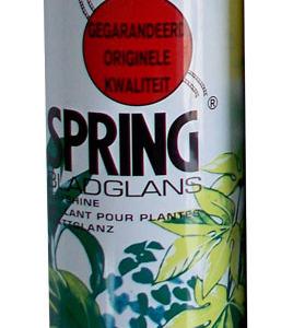 Полироль Spring 250 мл